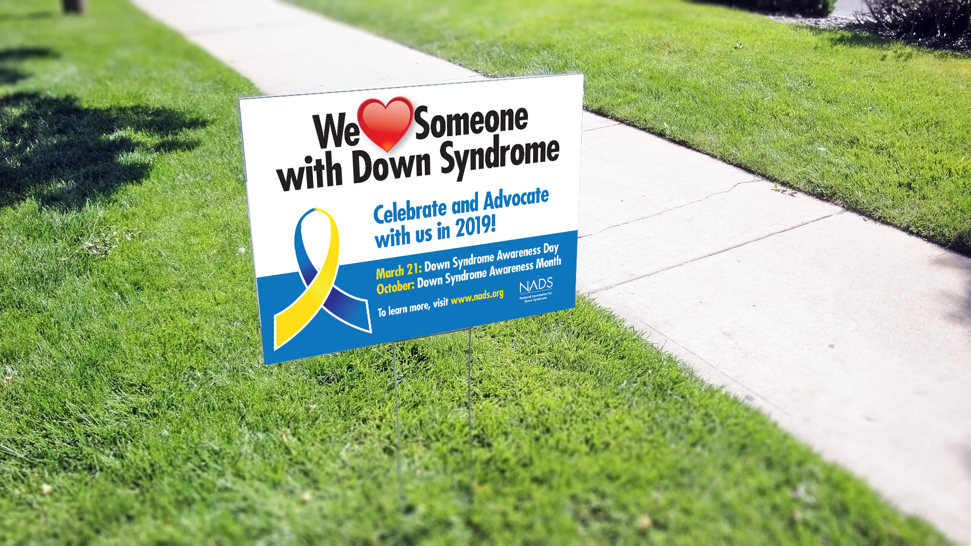 DS Day & Awareness Month 2019 Yard Sign